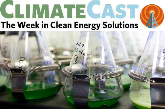 ClimateCast Logo over algae in flasks