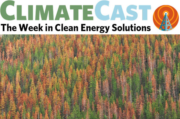 ClimateCast logo over beetle-killed forest, British Columbia