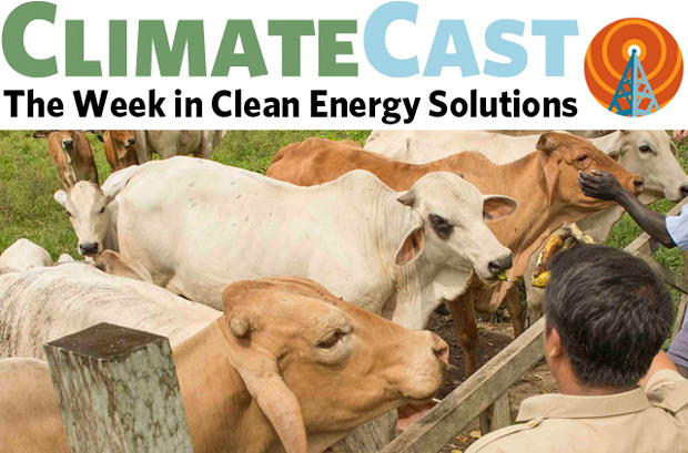 ClimateCast logo about photo of cows and person