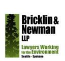 Bricklin-Newman logo