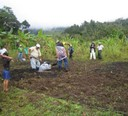 International Biochar Initiative NBI