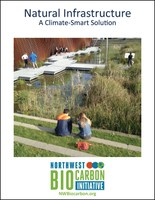 Natural Infrastructure report