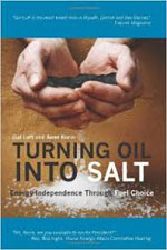 Turning Oil into Salt book